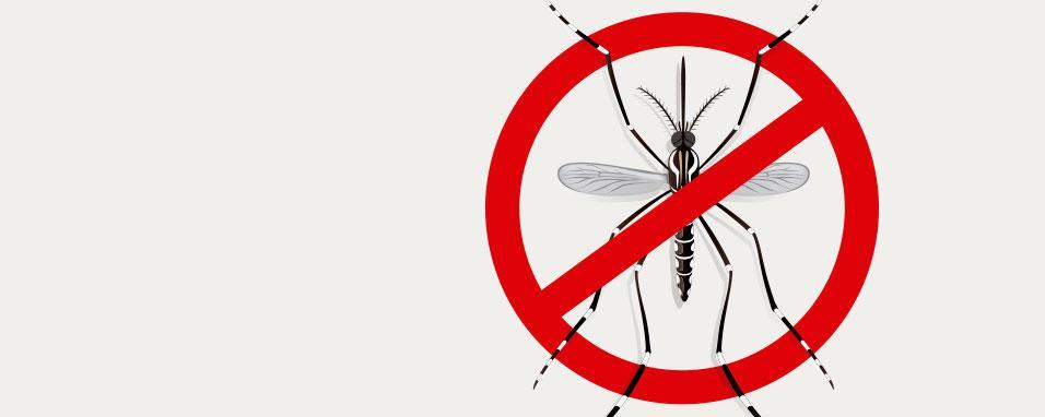 Campanha contra dengue