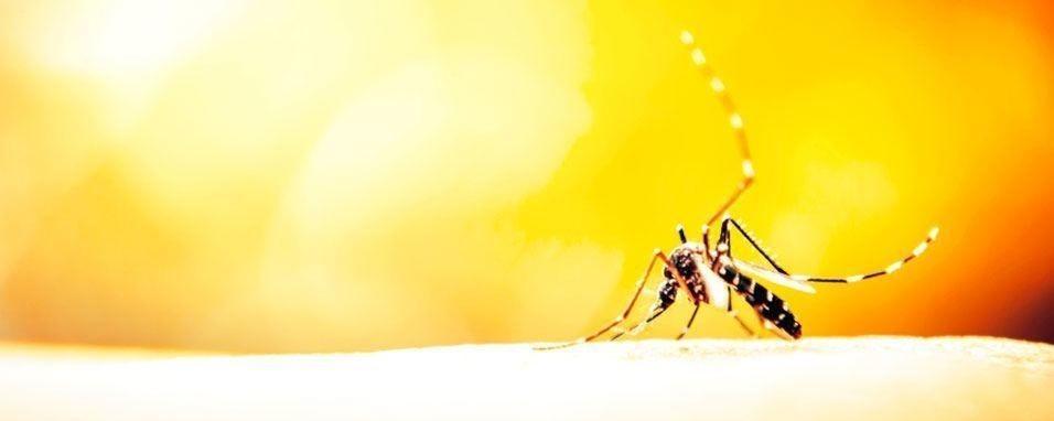 Dengue em condomínio
