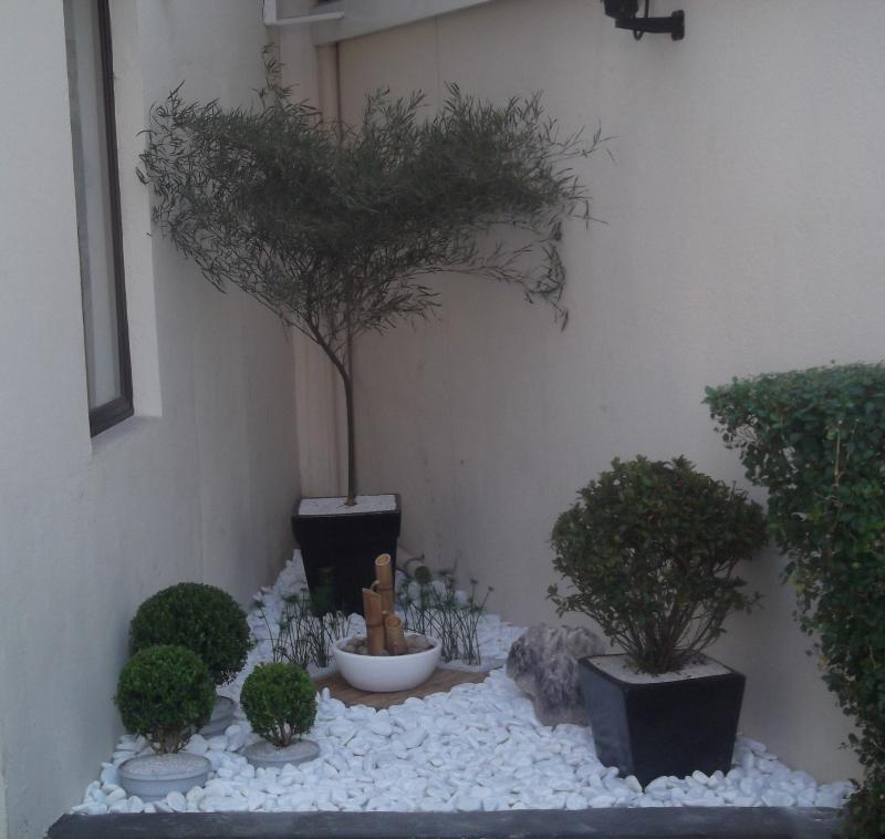 Foto - Jardim Japonês - Aproveitamento de pequenos espaços
