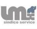 Logo da empresa LMX Síndico Service