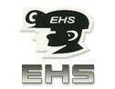 Logo da empresa EHS Segurança do Trabalho